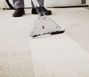 Carpet Stain Removal Toronto