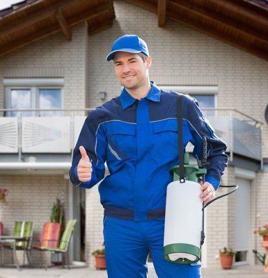 pest-control-services-toronto