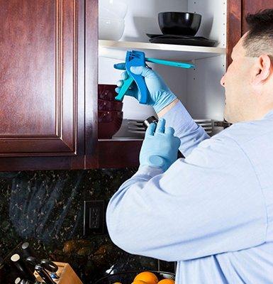 pest-control-service-midtown-toronto